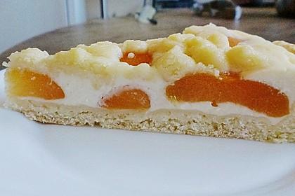 Tarte aux Abricots 96