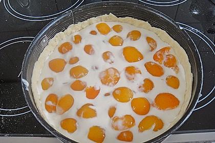 Tarte aux Abricots 137