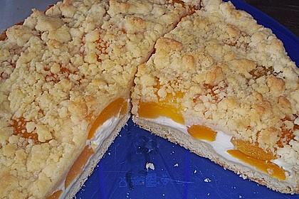 Tarte aux Abricots 56