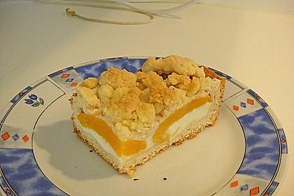 Tarte aux Abricots 90
