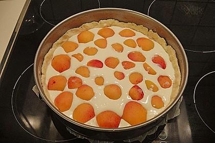 Tarte aux Abricots 98
