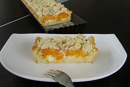 Tarte aux Abricots 14