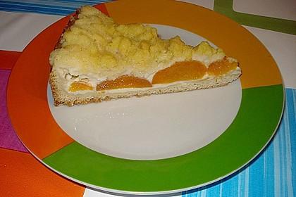 Tarte aux Abricots 75