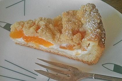 Tarte aux Abricots 95