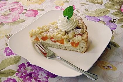 Tarte aux Abricots 16
