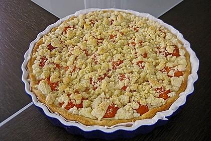 Tarte aux Abricots 15