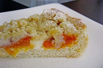 Tarte aux Abricots 102
