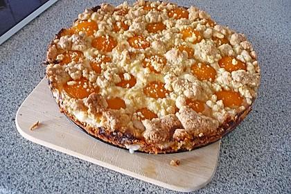 Tarte aux Abricots 82