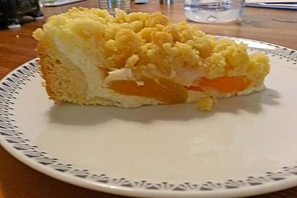Tarte aux Abricots 88