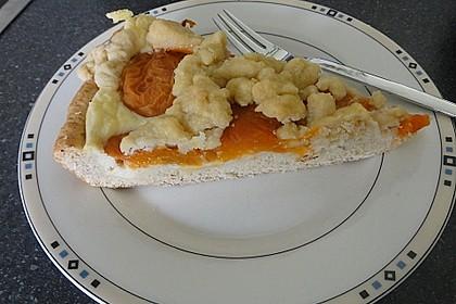 Tarte aux Abricots 40