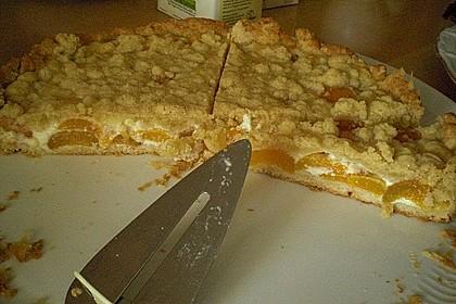 Tarte aux Abricots 106