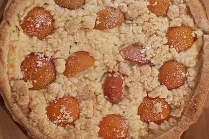 Tarte aux Abricots 39