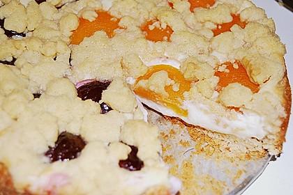 Tarte aux Abricots 130
