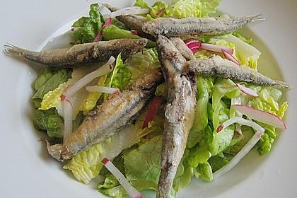 Sardinen auf Blattsalat