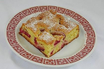 Obst - Blechkuchen 2