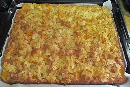 Obst - Blechkuchen 6
