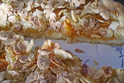 Aprikosenkuchen mit Mandelkruste 2