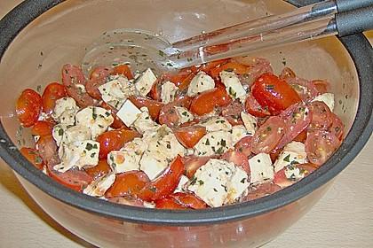 Mozzarella - Tomaten - Salat 63