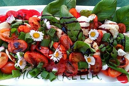 Mozzarella - Tomaten - Salat 2