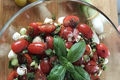 Mozzarella - Tomaten - Salat 16