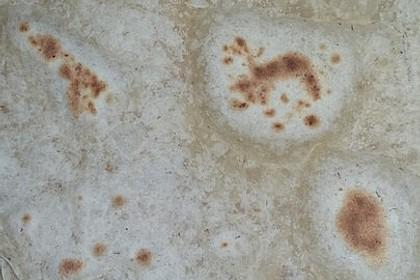 Weizenmehl - Tortillas 31