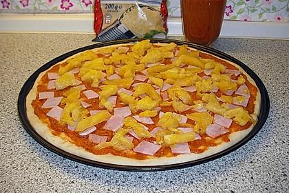 Hawaii-Pizza 28