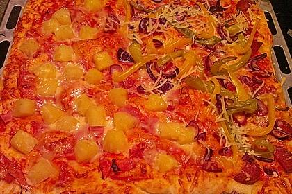 Hawaii-Pizza 34