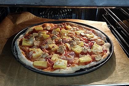 Hawaii-Pizza 10
