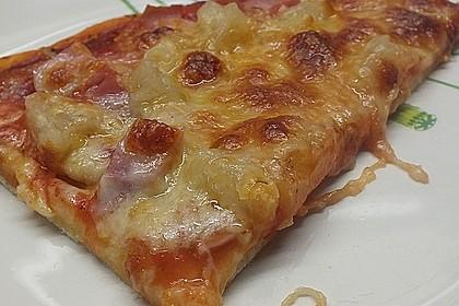 Hawaii-Pizza 12