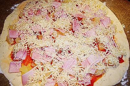Hawaii-Pizza 30