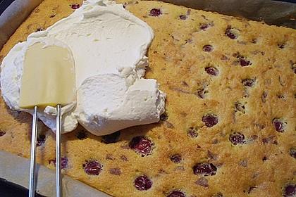 Kirsch - Eierlikör - Blechkuchen mit Schmand - Sahne 28