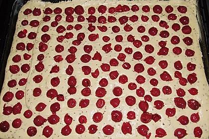 Kirsch - Eierlikör - Blechkuchen mit Schmand - Sahne 68