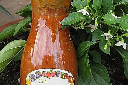 Hot Zucchini - Salsa 5