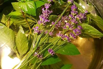 Pfefferminzsirup mit Lavendel (Bild)