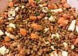 Linsen - Möhren - Salat