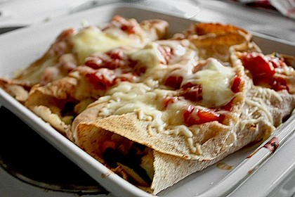 Enchilada verdura 109