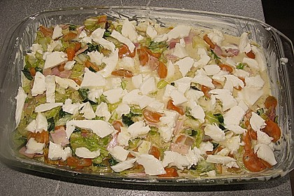 Wunderbare Spitzkohl - Möhren - Lasagne 24