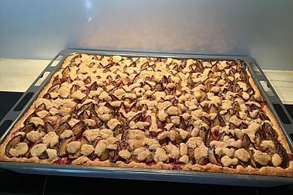 Omas Streusel - Zwetschgenkuchen mit Mürbteig 6