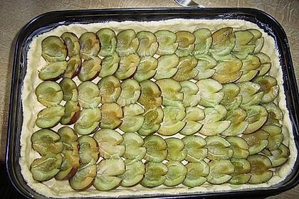Omas Streusel - Zwetschgenkuchen mit Mürbteig 15