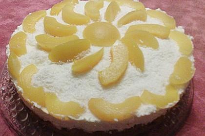 Marillenkuchen mit Topfen - Obers - Creme und Kokosflocken 2