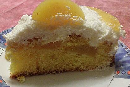 Marillenkuchen mit Topfen - Obers - Creme und Kokosflocken 3