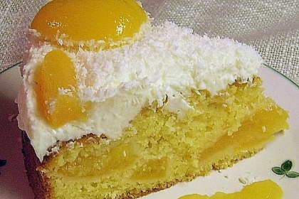 Marillenkuchen mit Topfen - Obers - Creme und Kokosflocken 1