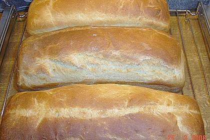 Goldener Toast 83