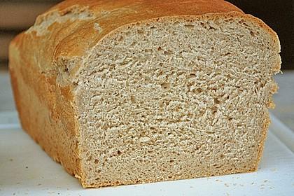 Goldener Toast 47