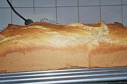 Goldener Toast 214