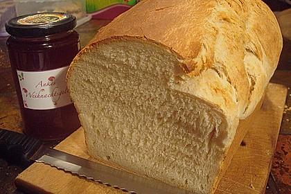 Goldener Toast 9