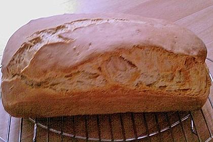 Goldener Toast 151