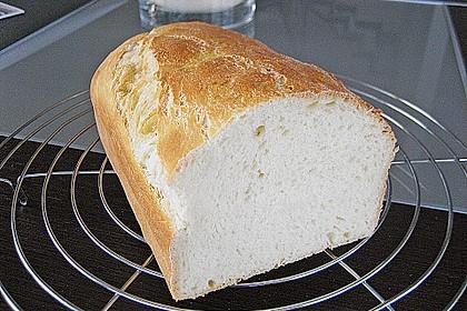 Goldener Toast 161