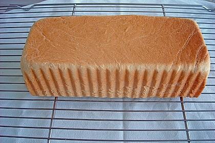 Goldener Toast 37