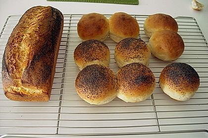 Goldener Toast 91
